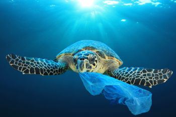 astemmingtideplasticpollution-